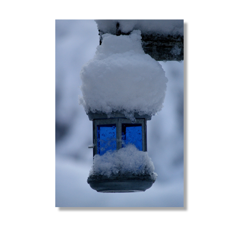 Winter Blues Canvas Print